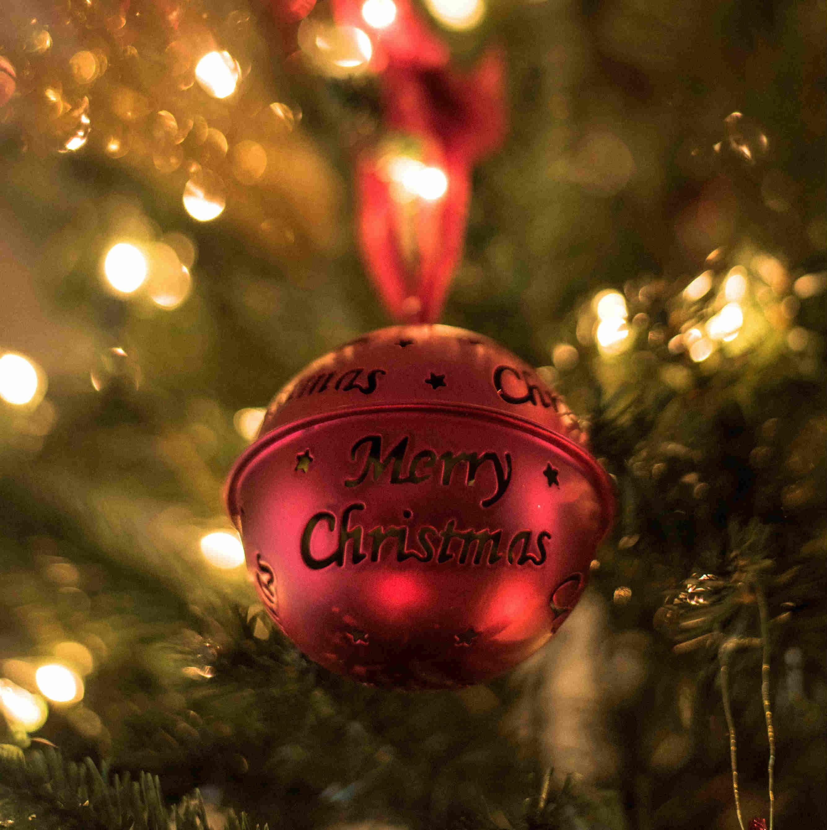 menu speciale, menu natale, natalizio, natale, ristorante centro, news, ultime novit, promozioni, menu speciali, pizza, pizza a 10