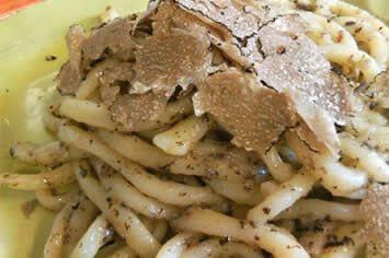 Truffle Pici