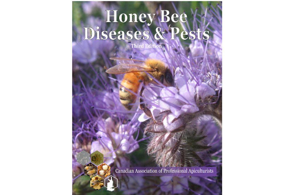 Honey Bee Diseases & Pests