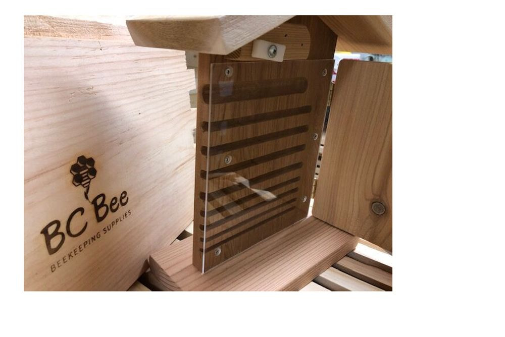 Mason Bee Observation House