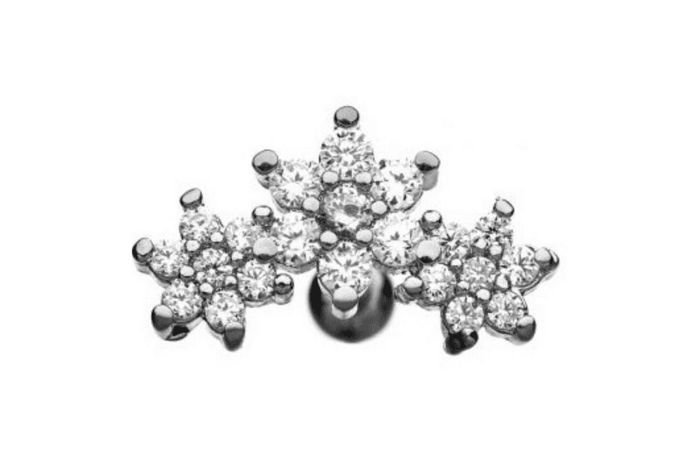 Barbell Piercing - Diana Steel
