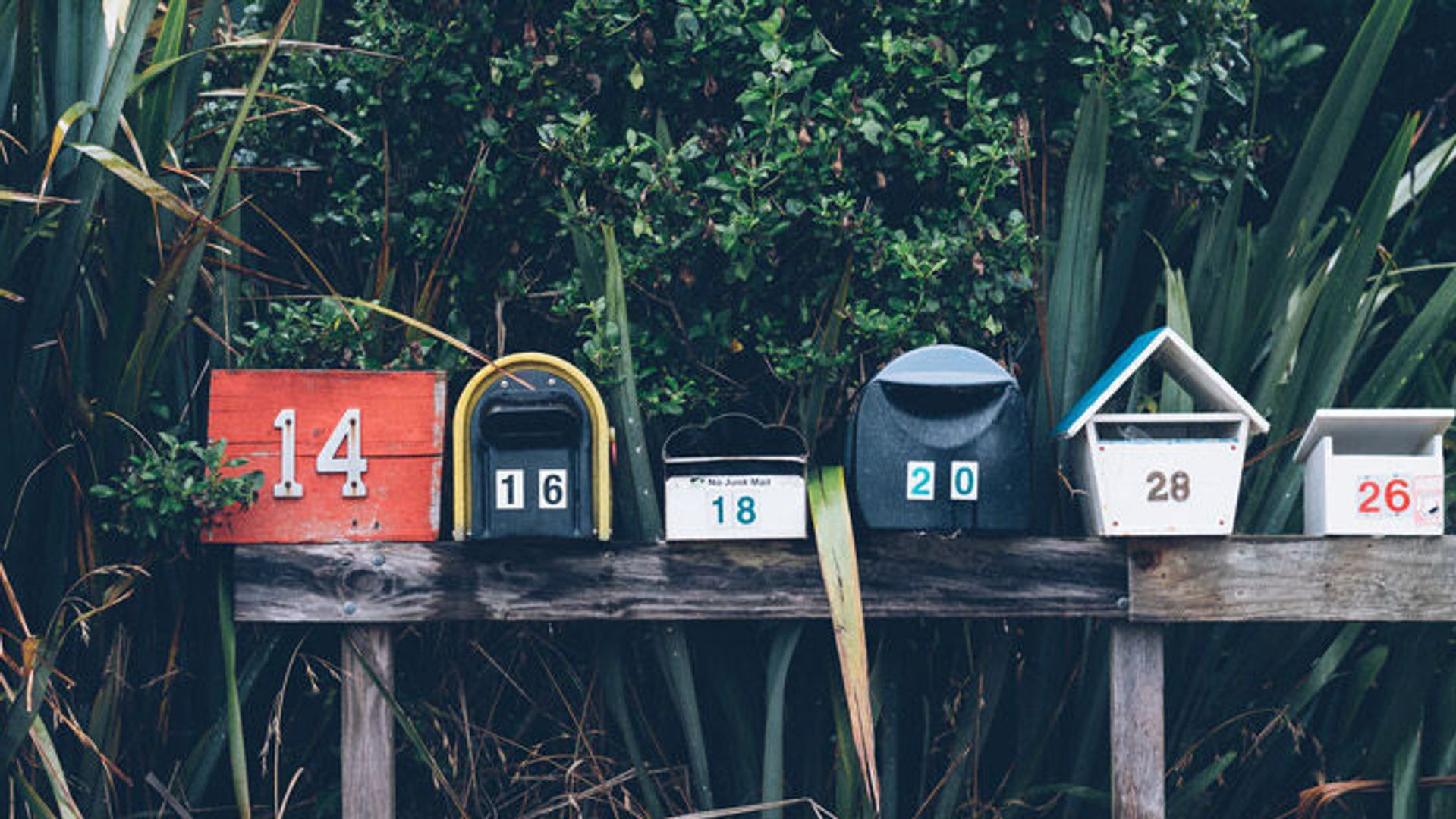 Creating Effective Newsletters