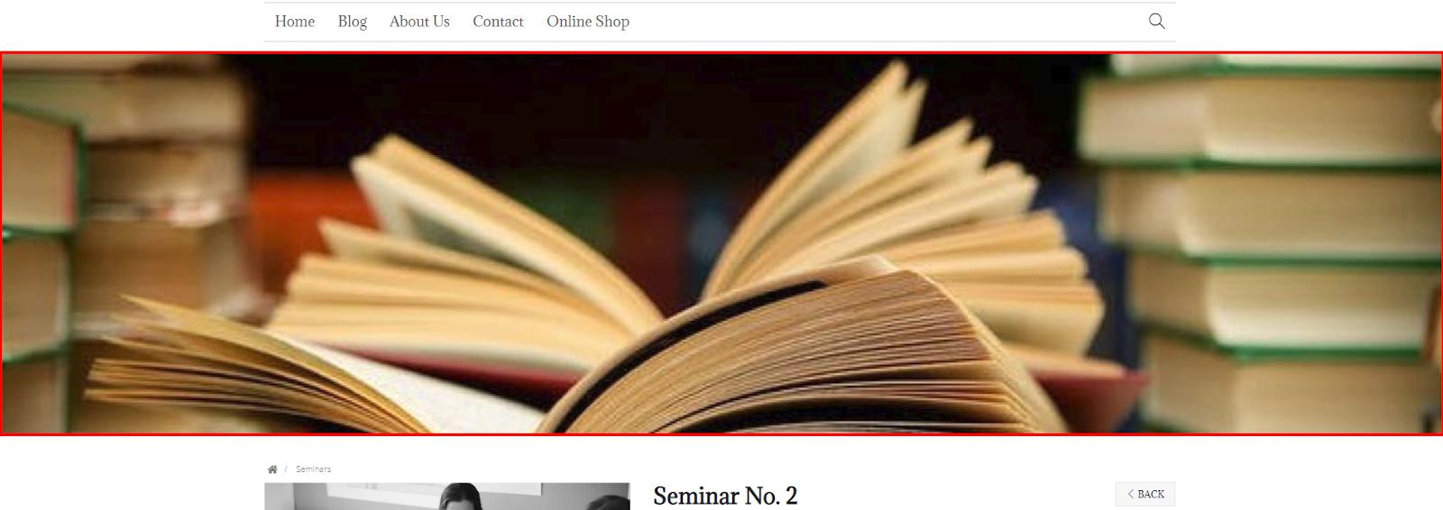 Seminar No 2
